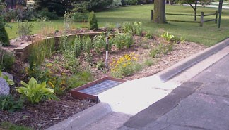 Image of Vegetation Establishment and Maintenance Stormwater Projects Pre-treatment