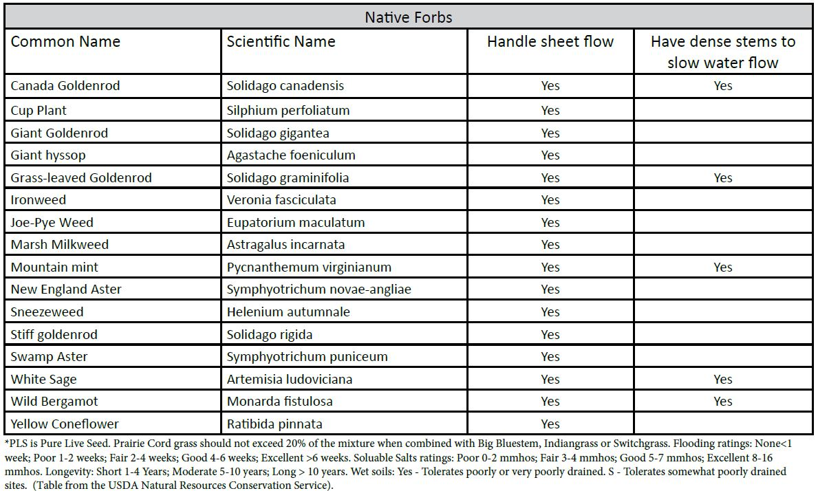 table of forbe species recommended for buffers