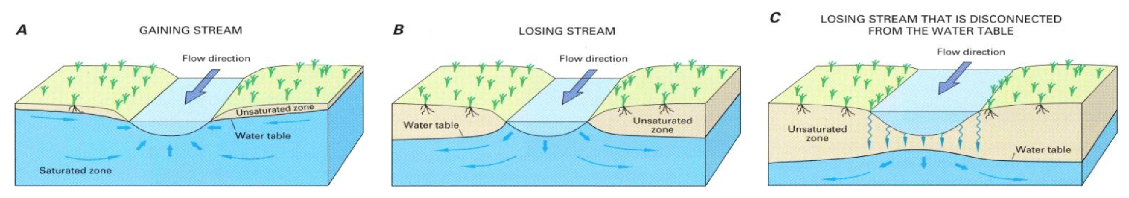 Streams can gain, lose or be disconnected from groundwater