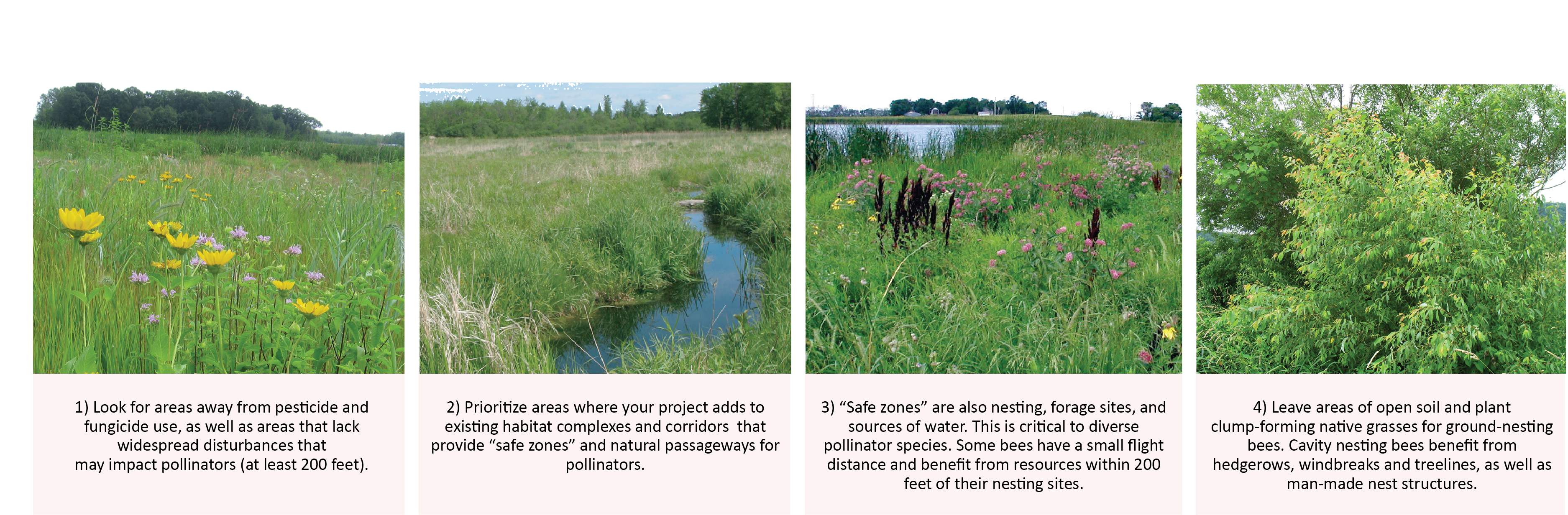 key considerations for locating pollinator habitat projects