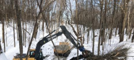 A crew from Minnesota Native Landscapes worked Dec. 19, 2019, on a Pioneer-Sarah Creek Watershed Management Commission project to stabilize a ravine in the Baker Park Reserve campground.