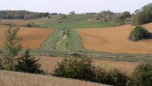 Rice County Buffer