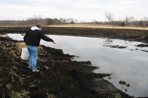 Image of Vegetation Establishment and Maintenance Wetland Establishment Planting Seed
