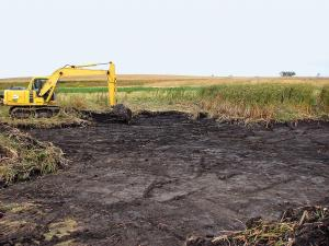 Vegetation Establishment and Maintenance Wetland Establishment Project Sequencing