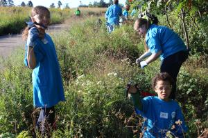 Kids removing invasive plants.