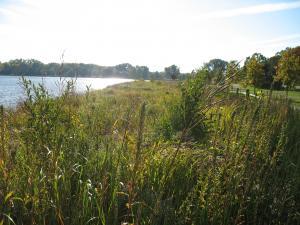 shoreline restoration at Lake Phalen