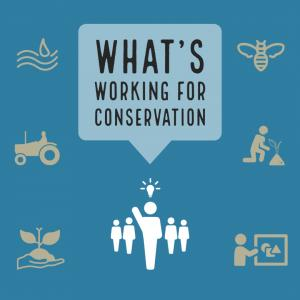 What's Working for Conservation Logo