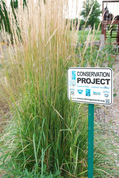Picture of Conservation Project from Chisago SWCD