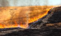 Prescribed burn of prairie landscape